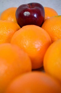 Apples and Oranges - Making your brand and your website stand out from the competition, photo by artist Glen Green